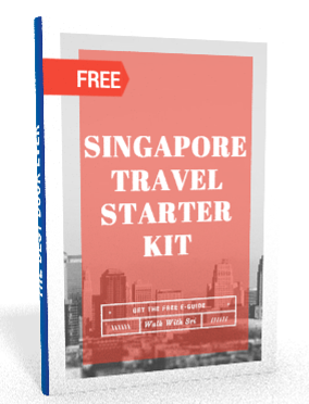 singapore travel starter kit